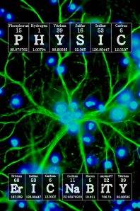 physicCoverGlia16greenBlue2b