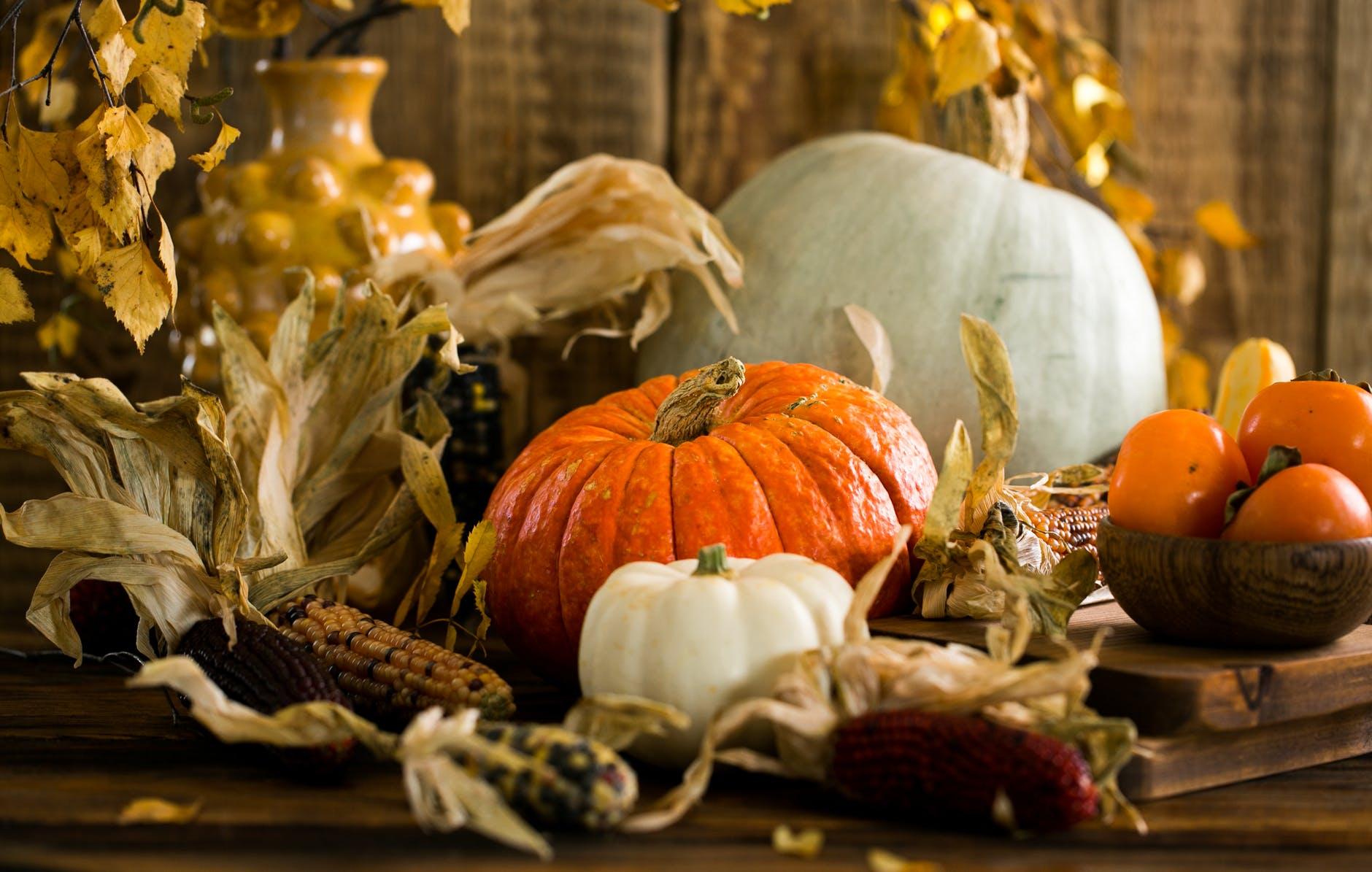 Gourd harvest – Photo by Anna Tukhfatullina Food Photographer/Stylist on Pexels.com